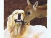 golden-and-deer-07-2005-sophia-ehrlich