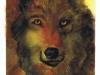 wolf-10-2004-sophia-ehrlich
