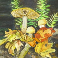 """""""Forest Floor"""" by Lahle. Water color and ink. 2008 (sometime) Ashburn VA"""