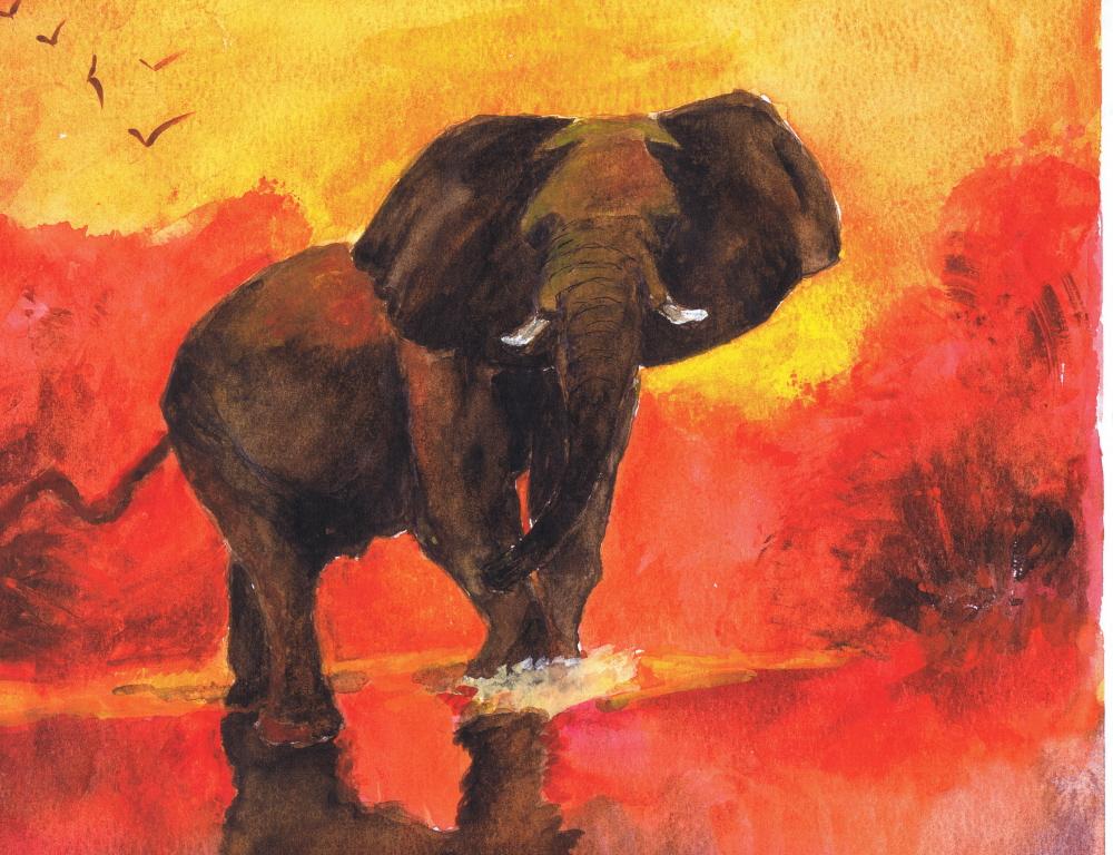 Bull Elephant Sunrise 08 2003 Sophia Ehrlich