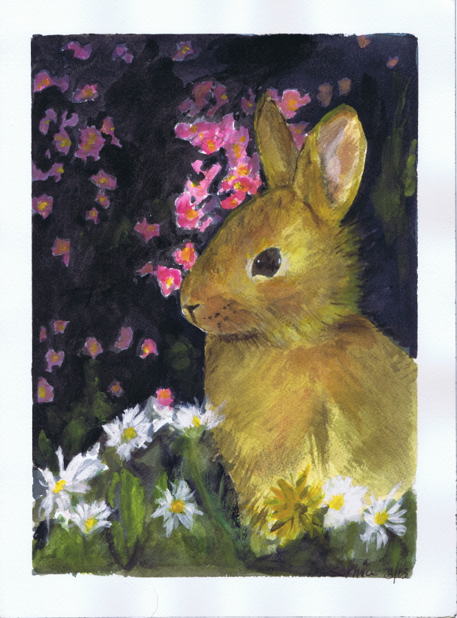 Bunny watercolor by Sophia Ehrlich