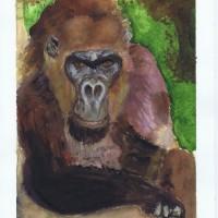 Gorilla Watercolor Painting, 02-25-2004 by Sophia Ehrlich