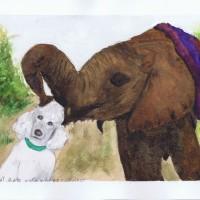 Ndomat Plays With Harry - Nairobi 12 02 04 Sophia Ehrlich