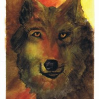 Wolf, Watercolor painting by Sophia Ehrlich