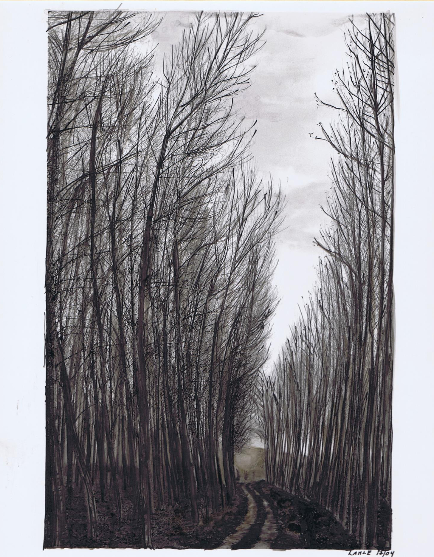 Birch Trees, Marker and Sepia India Ink. By Lahle Wolfe