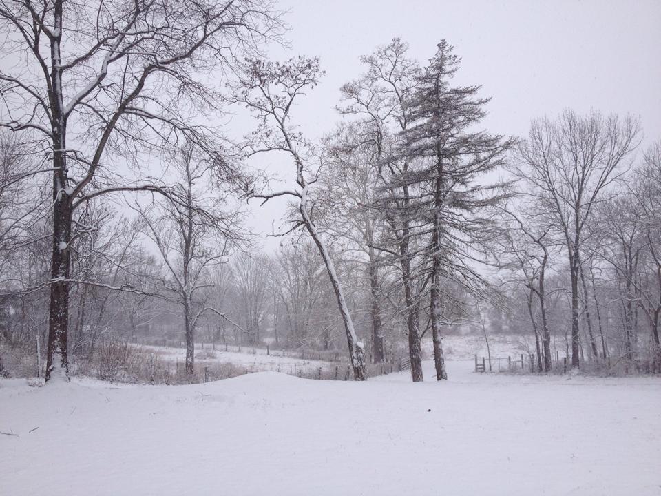 karens snow pic