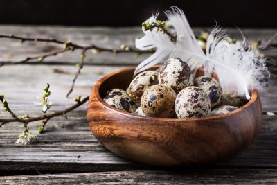 Bowl of quail eggs with blossom branch