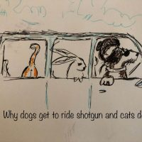 Cartoon - Why dogs ride shotgun and cats don't